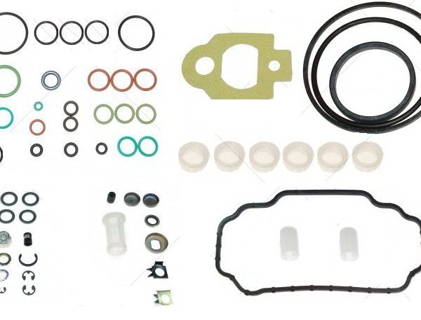 Complete seal repair kit for lucas delphi des dp210 injection complete seal repair kit for lucas delphi des dp210 injection pumps fandeluxe Image collections
