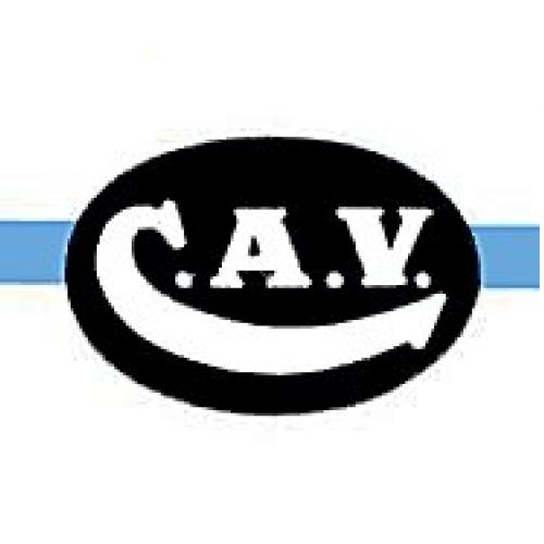CAV Seal Repair Kits