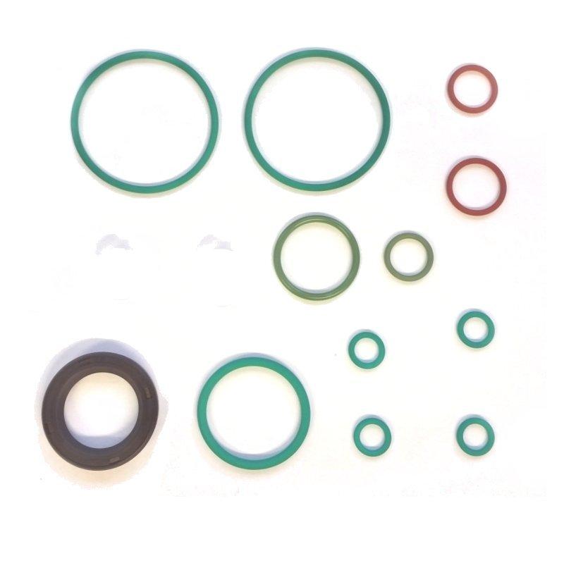 Seal repair kit for Bosch CP4 1 common rail pumps single element